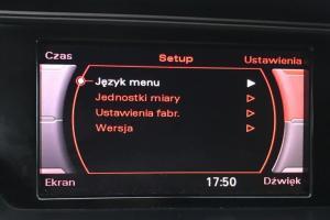Audi Radio Symphony / Audi Concert - Polskie Menu
